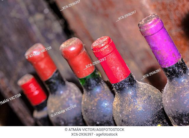 wine bottles stacked in a wine cellar