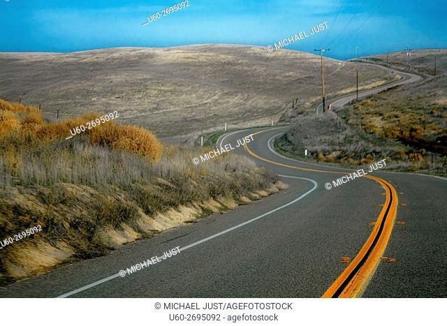 A two lane road passes through pastureland in rural California