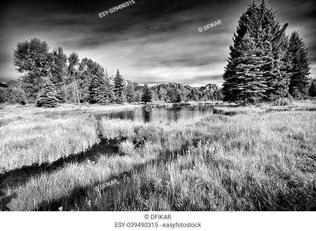 Summer morning view of the Snake River at Schwabacher Landing in Grand Teton National Park, WY