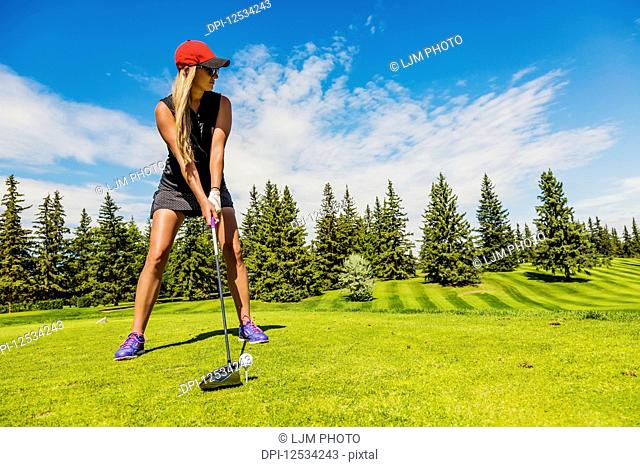 A female golfer lines up her driver to the golf ball on a tee; Edmonton, Alberta, Canada