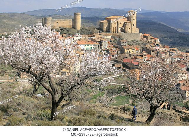 Cornago village in spring time, Biophere reserve, Rioja baja, Spain, Europe