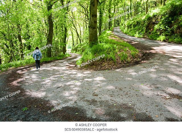 The road down to Woody Bay on the north Devon coast near Lynton, UK