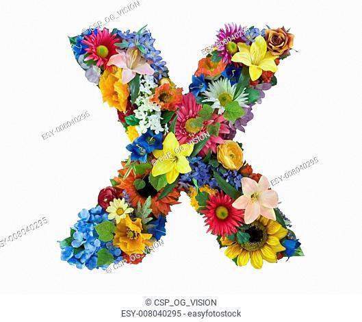Flower Alphabet - X