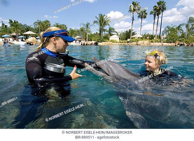 Boy swimming with a Dolphin (Tursiops truncatus), Discovery Cove, Orlando, Florida, USA, North America