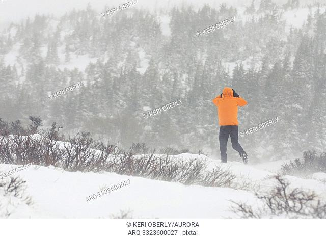 A young man hikes on a trail during a whiteout storm in Anchorage, Alaska