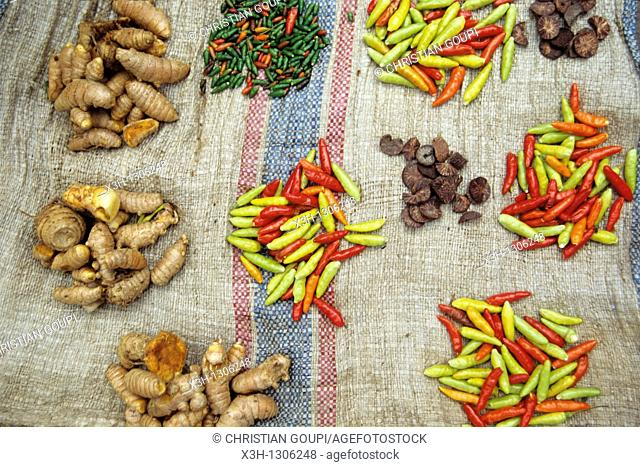 display of chili pepper and ginger at the market, Republic of Indonesia, Southeast Asia and Oceania