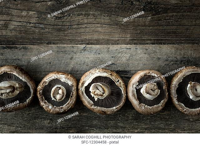 Row of portobello mushrooms on a wooden surface