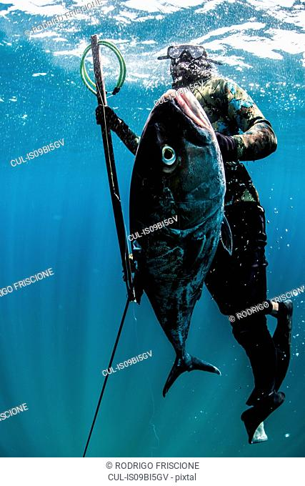 Spearfisherman ascends with his catch, Isla Mujeres, Quintana Roo, Mexico