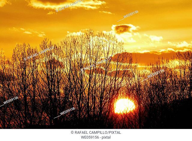 Sunset. Osseja, Pyrénées-Orientales, France