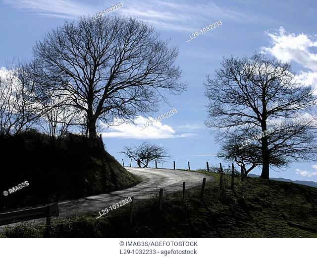 Road in San Román village, Piloña municipality  Asturias, Spain