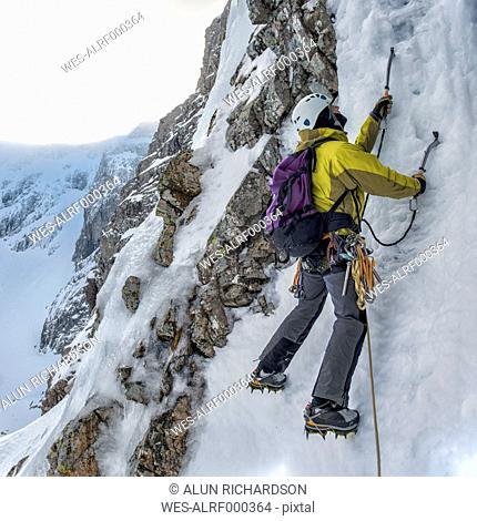 United Kingdom, Scotland, Ben Nevis, ice climbing