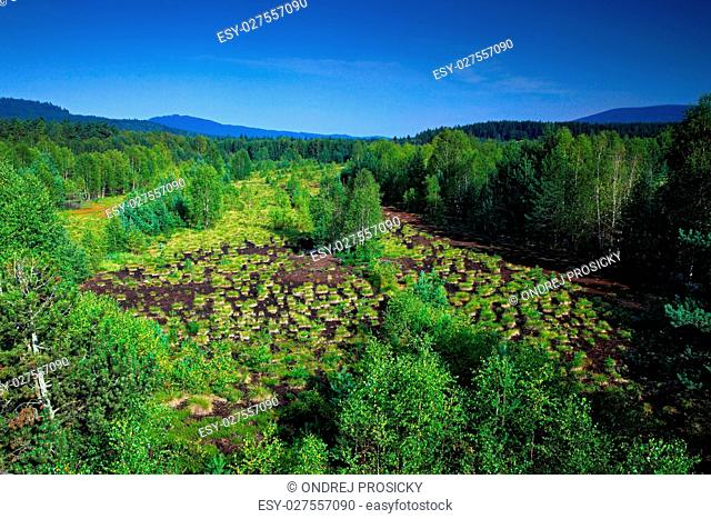 Typical landscape from Sumava national park in Czech Republic, S