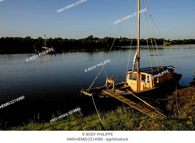 France, Indre et Loire, Loire Valley listed as Word Heritage by UNESCO, La Chapelle sur Loire, navigation on a traditional boat called Toue