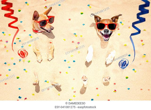 couple of two dogs buried in the sand at the beach on happy new years eve ,confetti and serpentine streamers all over the place