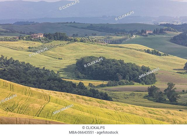 Green rolling hills and farm houses of Crete Senesi (Senese Clays) province of Siena Tuscany Italy Europe