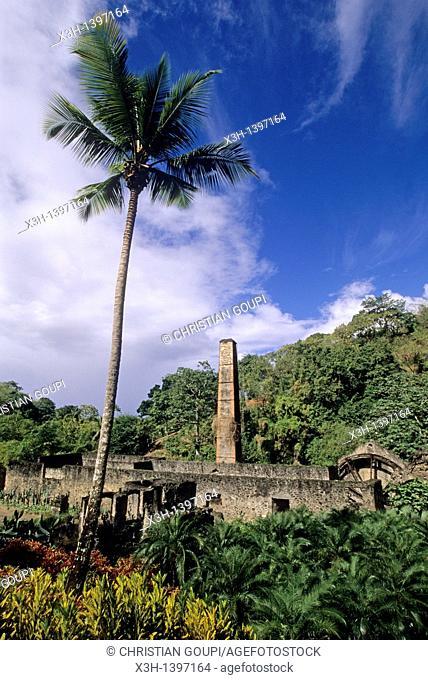 ruines d'une ancienne distillerie aux environs de Saint-Pierre Ile de la Martinique Departement et Region d'Outremer francais Archipel des Antilles...