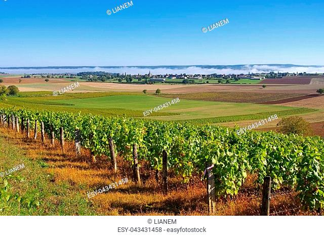 Amazy, small village in Burgundy, France