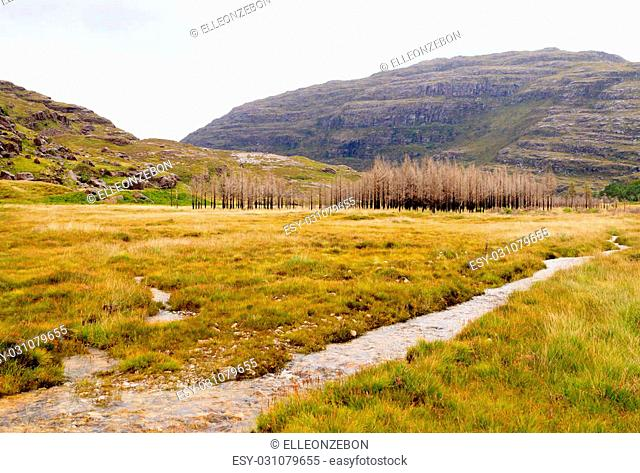 Scottish river trough countryside. Perspective river view. Scotland panorama