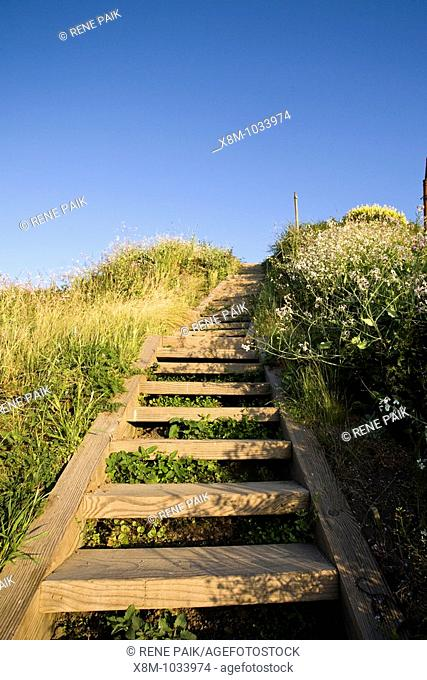 A portion of the over 1000 steps at the Batteries to Bluffs Trail at the Historic Presidio in San Francisco, California, USA