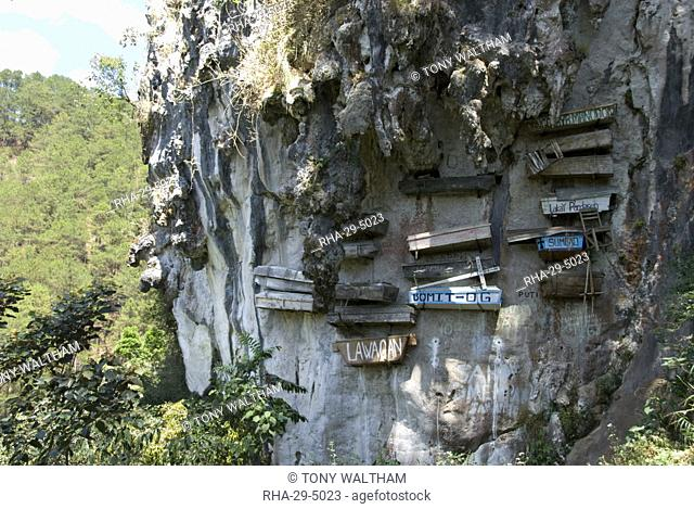 Animist hanging coffins still in use today, on limestone cliff in Echo Valley, Sagada, Cordillera, Luzon, Philippines, Southeast Asia, Asia