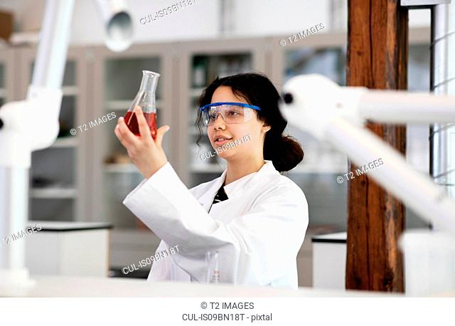 Student analysing sample in flask in laboratory