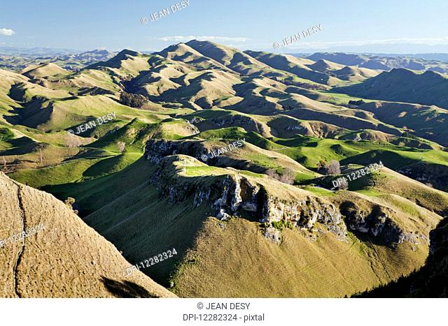 Panorama of wavy mountains and pastures for sheep; North Island, New Zealand