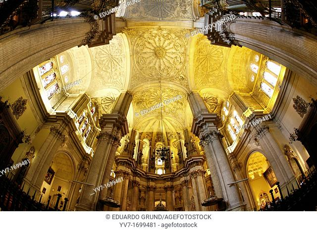Interior of the Cathedral, magnificent views and towering ceilings  Malaga Cathedral  Malaga, Andalusia, Spain