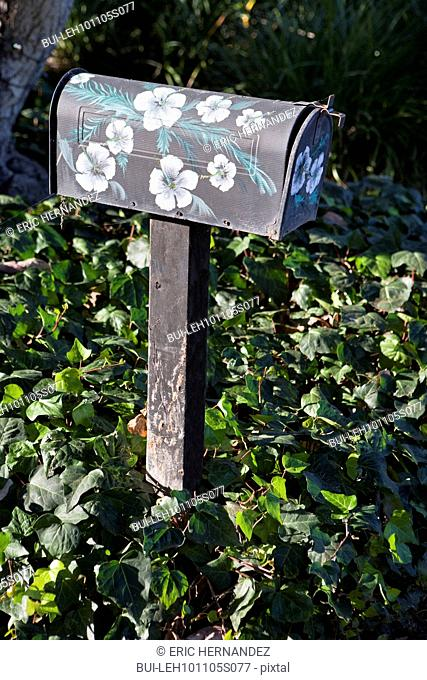 Floral painted mailbox surrounded by plants, Encinitas, California, USA