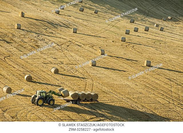 Harvest in South Downs National Park in West Sussex, England