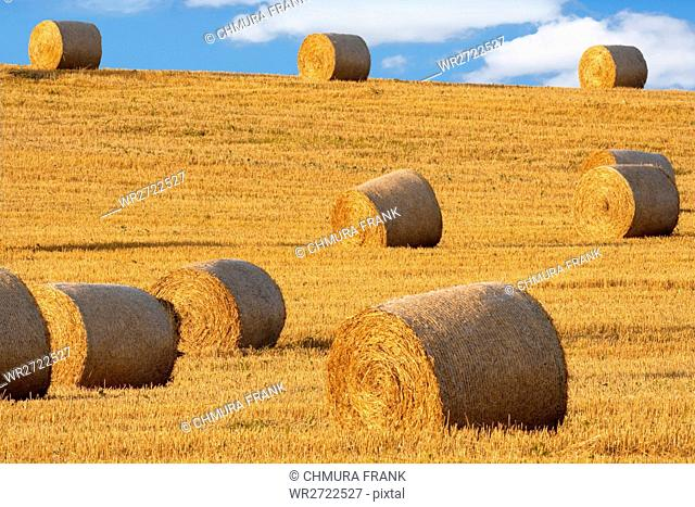 field with bales of hay, blue sky, bohemia, czech republic