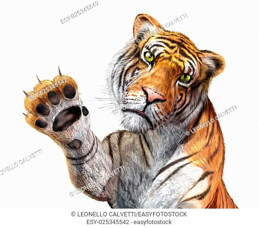 Tiger close up, facing the viewer, with the right hand up and claws