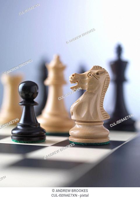 Chess game, player preparing to check mate