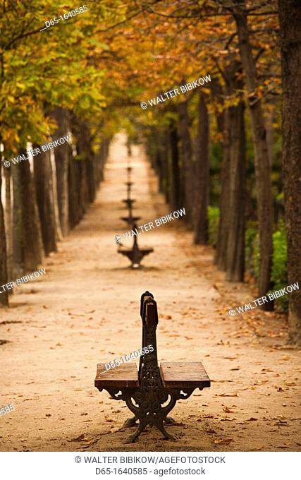 Spain, Madrid, Parque del Buen Retiro park, fall foliage