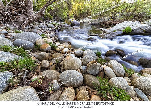 River Arenal in spring time. Sierra de Gredos. Avila. Spain. Europe