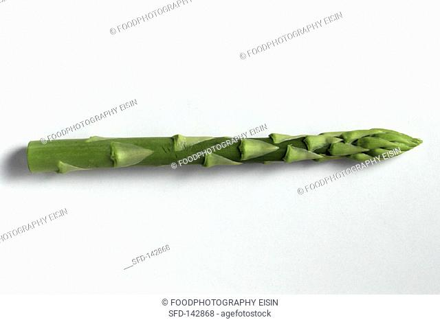 One Stalk of Green Asparagus