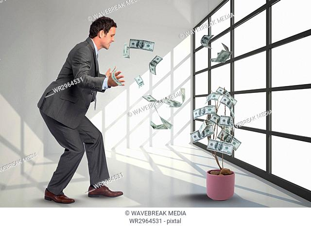 businessman is looking at falling money from a tree against office background