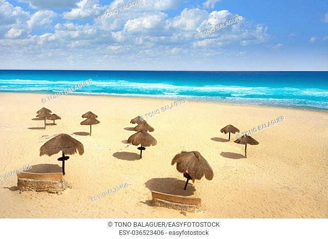 Cancun Mexico Delfines beach tropical in Caribbean