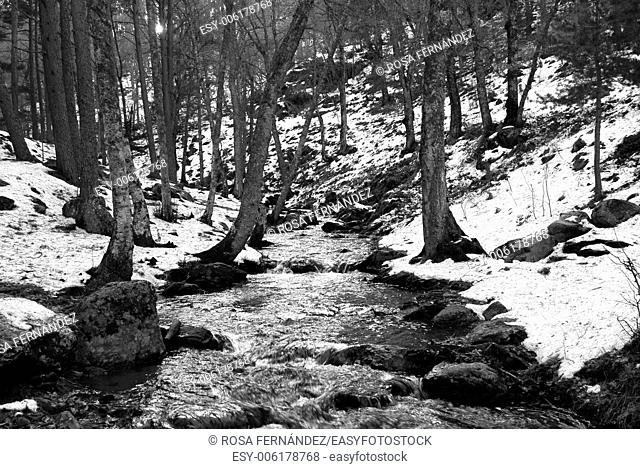Canencia River and snowy landscape, Guadarrama Mountains National Park, Madrid, Spain