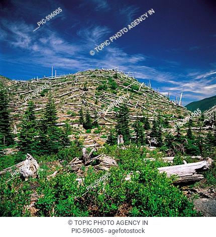 Mount St. Helens,Washington,USA