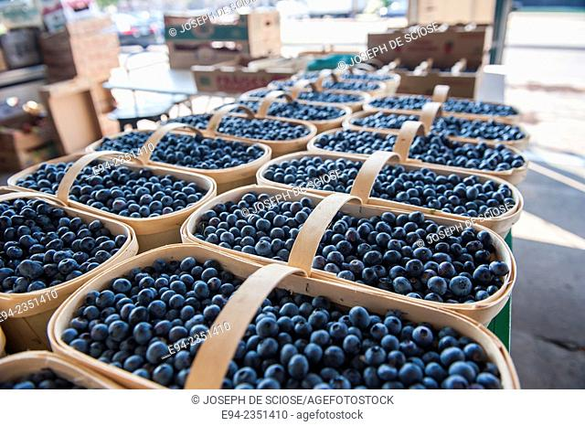 Fresh blueberries on display inside the farmer's market, Marché du Vieux-Port in Quebec City, Canada
