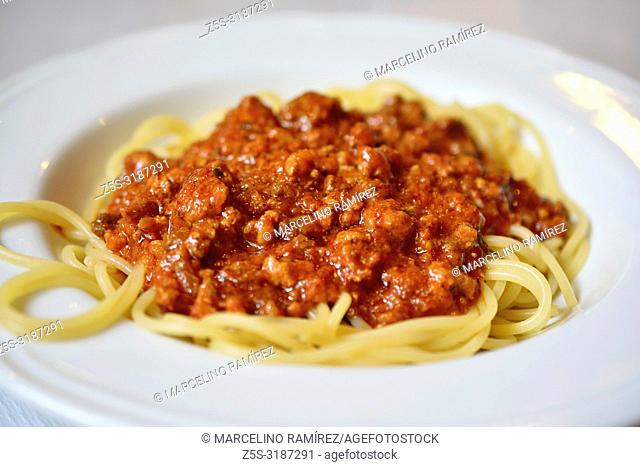 Traditional italian cuisine. Delicious spaghetti with bolognese sauce. Lucca, Province of Lucca, Tuscany, Italy, Europe