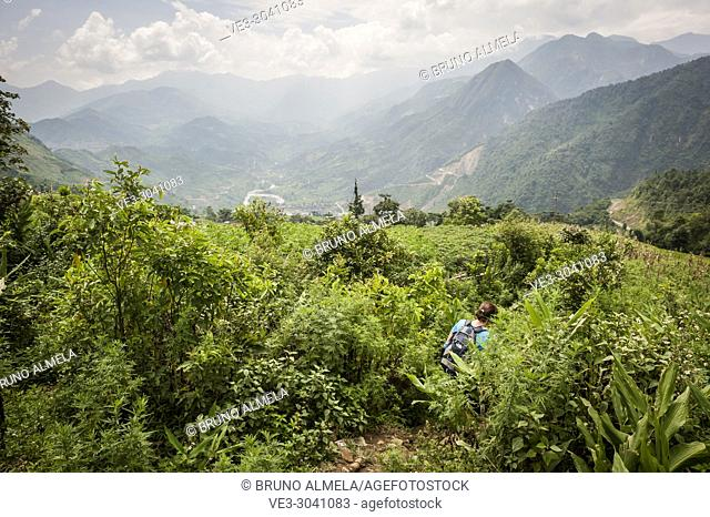 Hiking in Muong Hoa Valley, Sa Pa (Lao Cai province,Vietnam)