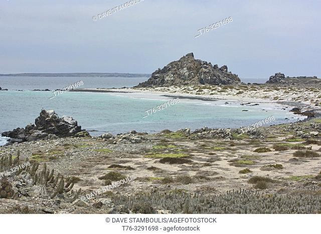 Beautiful Playa Tijeras beach on Isla Damas, Humboldt Penguin Reserve, Punta Choros, Chile
