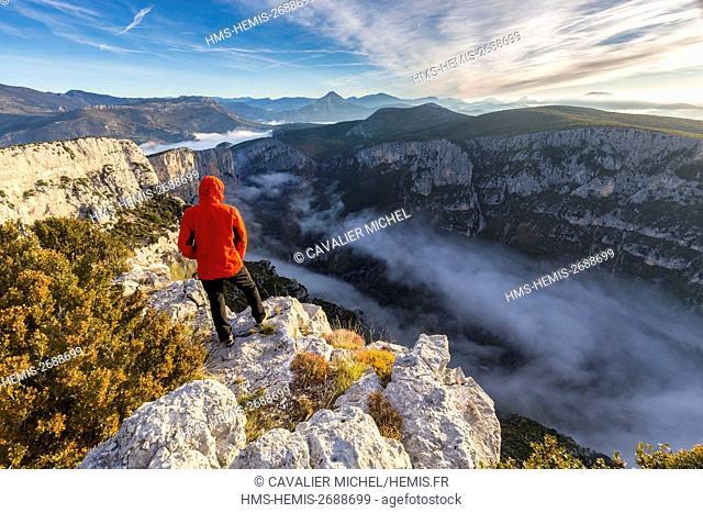 France, Alpes de Haute-Provence, regional natural reserve of Verdon, Grand Canyon of Verdon, cliffs of the Barres of Escalès seen by the belvedere of Pas de la...