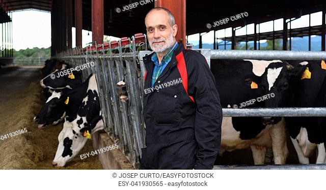 portrait of a farmer with cows