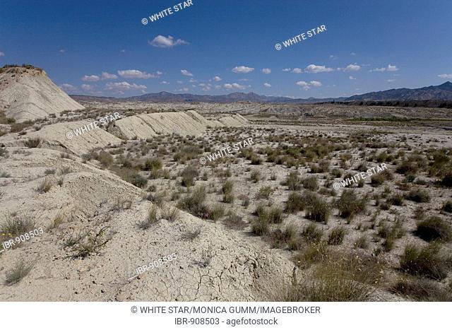 Desert like landscape near Abanilla, Murcia Region, Spain, Europe