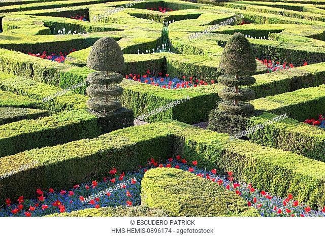 France, Indre et Loire, Loire Valley, listed as World Heritage by UNESCO, Villandry, Chateau de Villandry Gardens, property of Henri and Angelique Carvallo