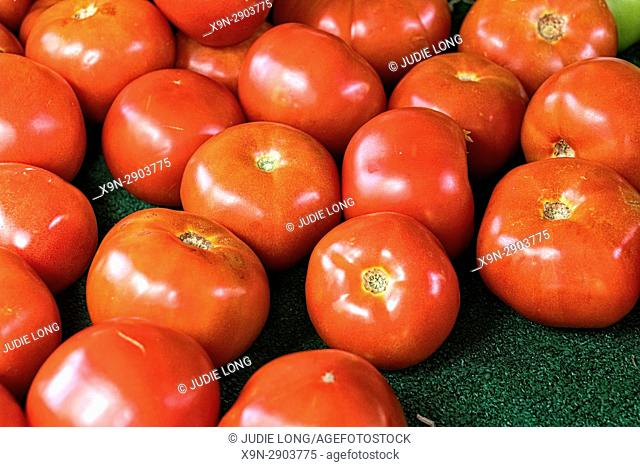 New York City, Manhattan. Red, Ripe Tomatoes Displayed and Offered for Sale at an Outdoor Market