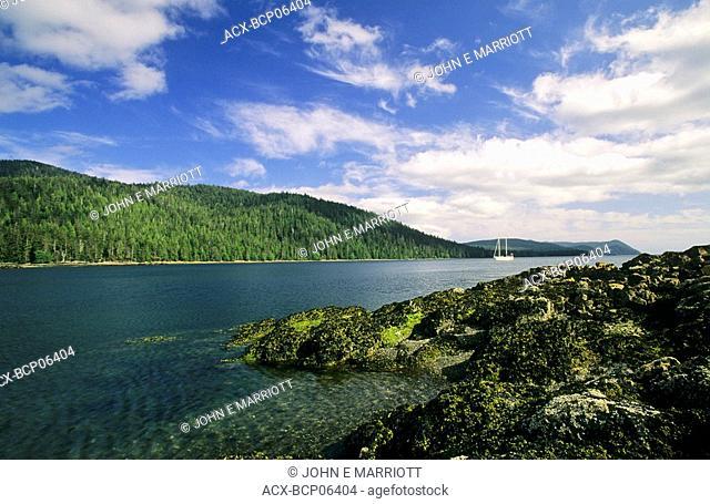 Schooner moored in Rose Inlet, Queen Charlotte Islands, British Columbia, Canada