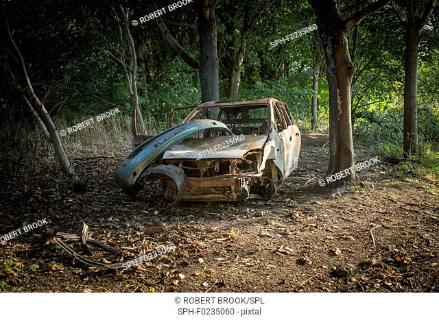 Burnt-out car in woodland